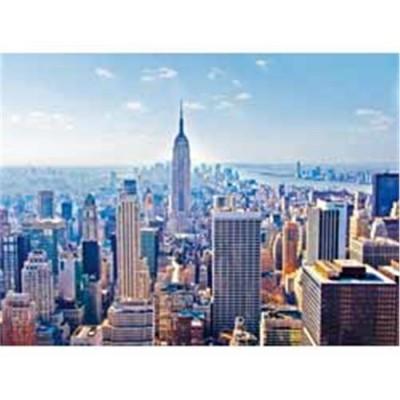 Puzzle 2000 new york