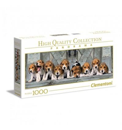 1000 beagles