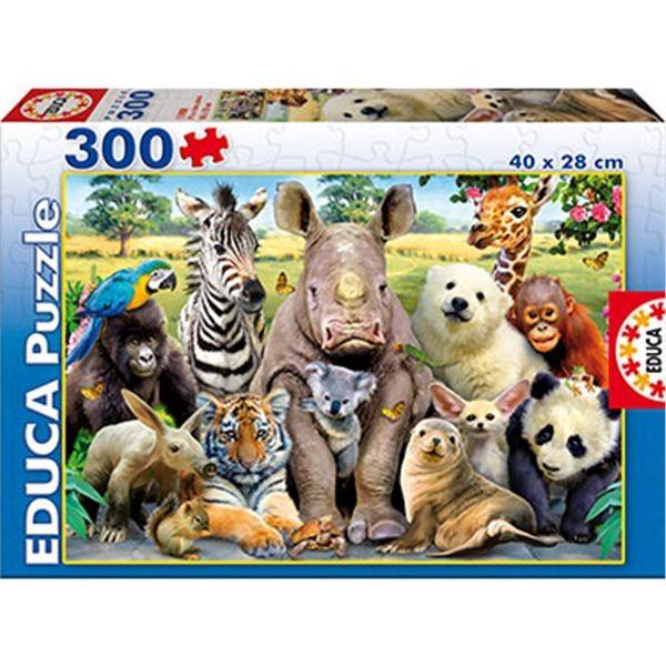 Puzzle 300 foto de clase